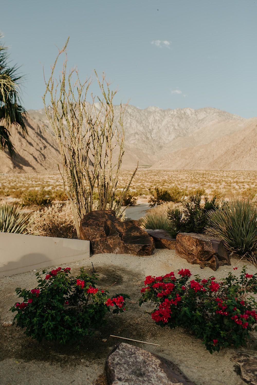 Palm Springs Wedding Photographer | http://alexandriamonette.com