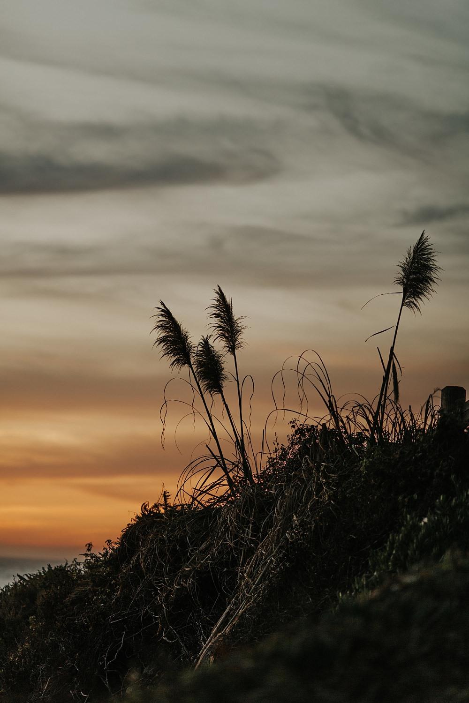 Big Sur Elopement | http://alexandriamonette.com