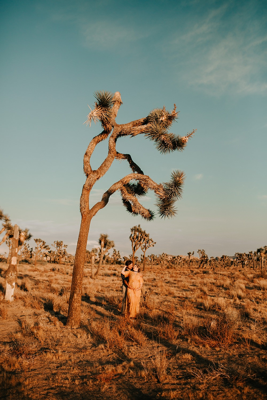 Joshua Tree Photographer   http://alexandriamonette.com