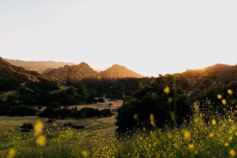 Malibu Creek State Park | https://alexandriamonette.com
